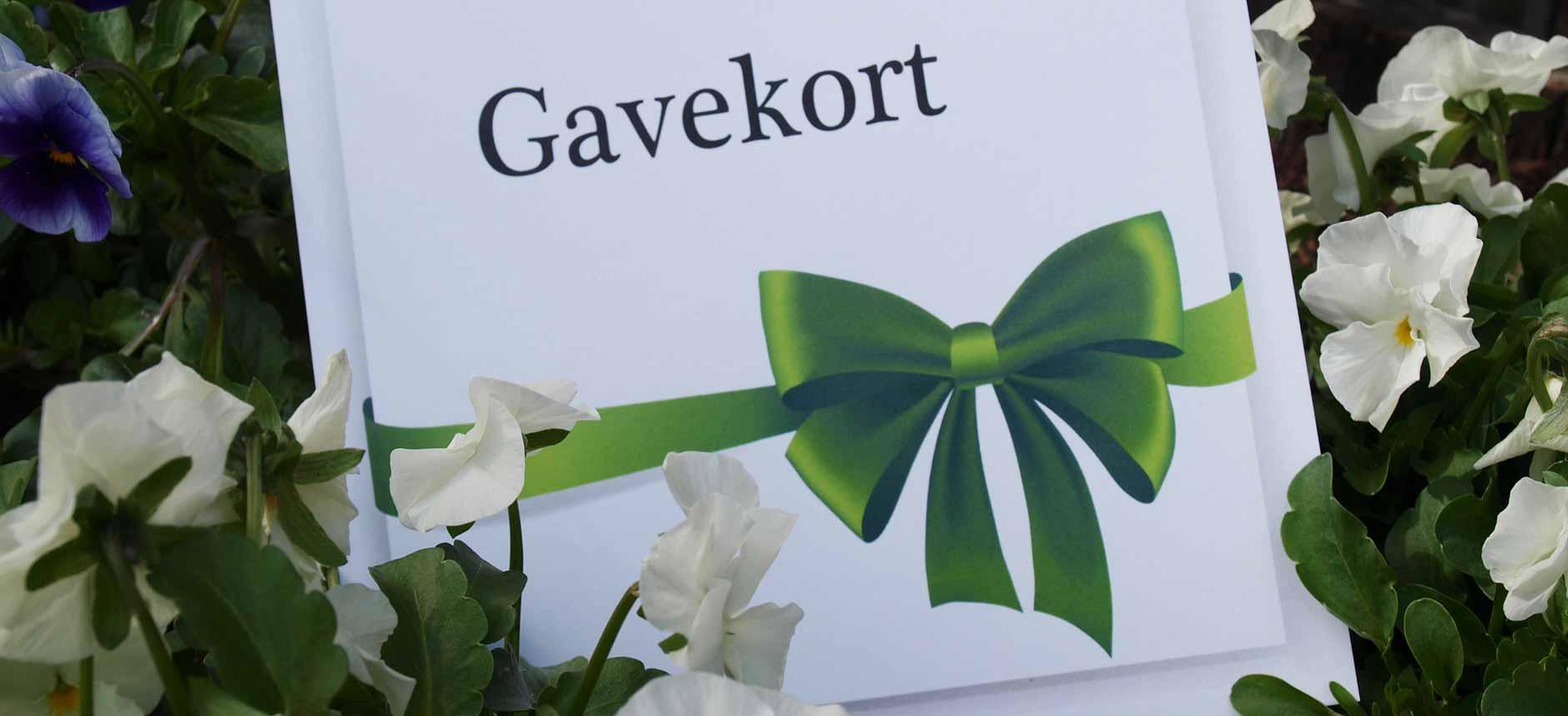 Gavekort_bredde(20)